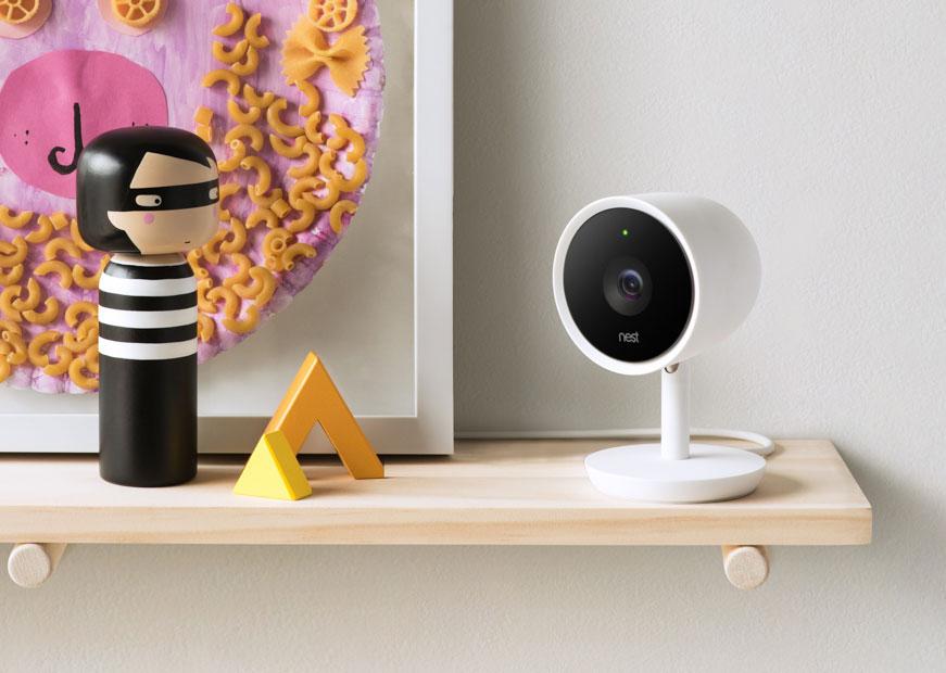 Berkshire Nest cam on shelf
